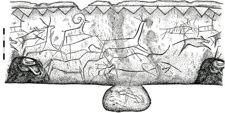 Фото №1 - Ученые выяснили, как древние люди выбирали собак