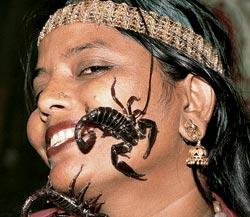 Фото №4 - Тропик скорпиона