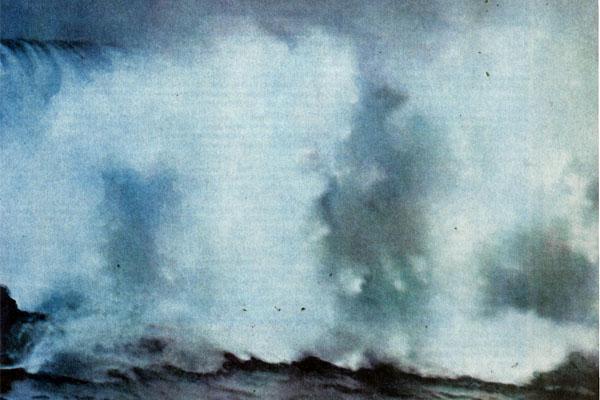 Фото №1 - «Белая смерть» в лагуне