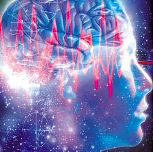 Фото №1 - Магнитные поля стимулируют работу мозга