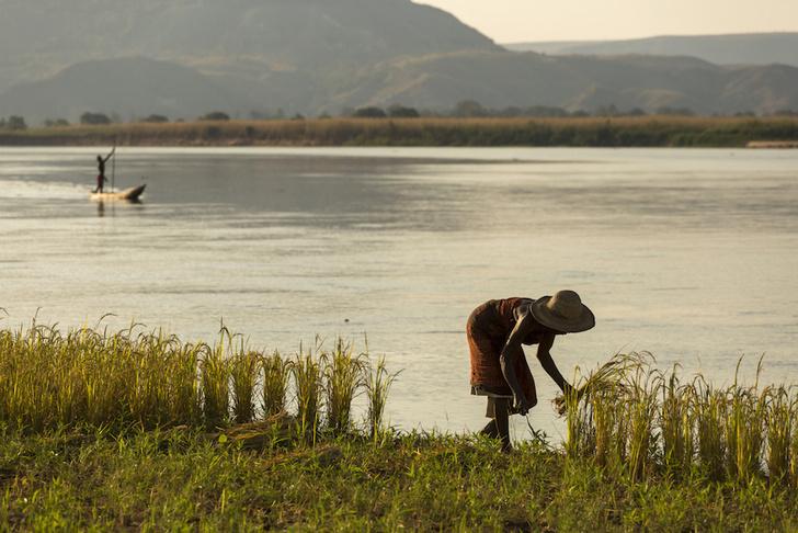 Фото №6 - Крупнейший остров-государство: путешествие на Мадагаскар