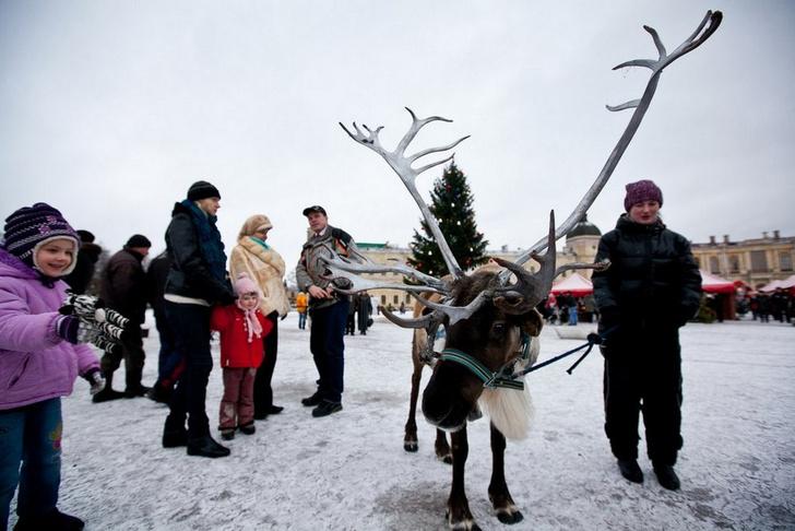 Фото №6 - Гид по новогодним каникулам: топ-9 детских мероприятий