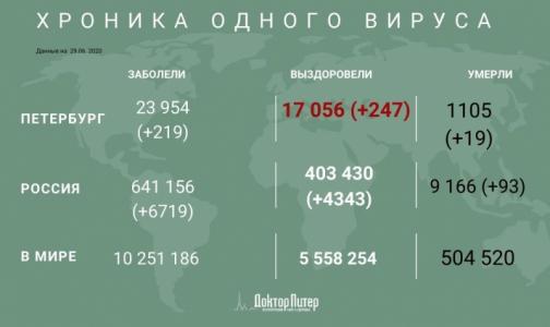 Фото №1 - За сутки коронавирус выявили у 219 петербуржцев