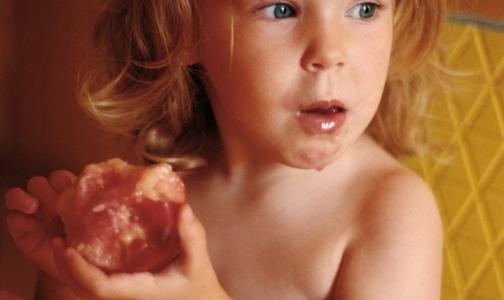 Фото №1 - Как уберечьcя от пищевых отравлений летом – советы Роспотребнадзора