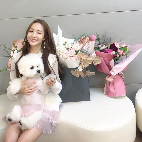 Фото №16 - Милота и позитив: домашние питомцы корейских актеров