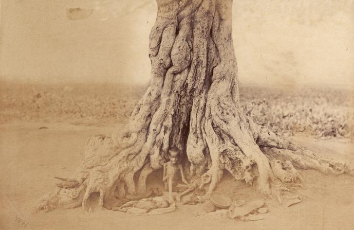Фото №3 - Мадрасский мор: история Великого голода в Индии 1876–1878 годов в фотографиях