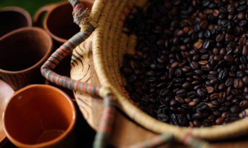 Фото №1 - Антиоксиданты из кофе оказались в 500 раз мощнее витамина С