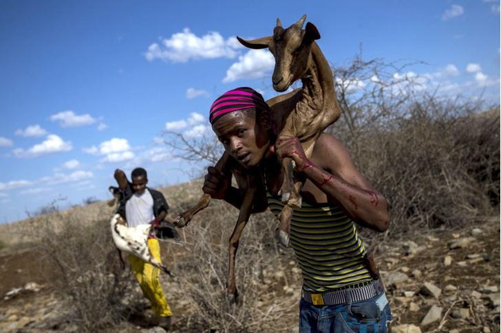 Фото №1 - Засуха в Сомали