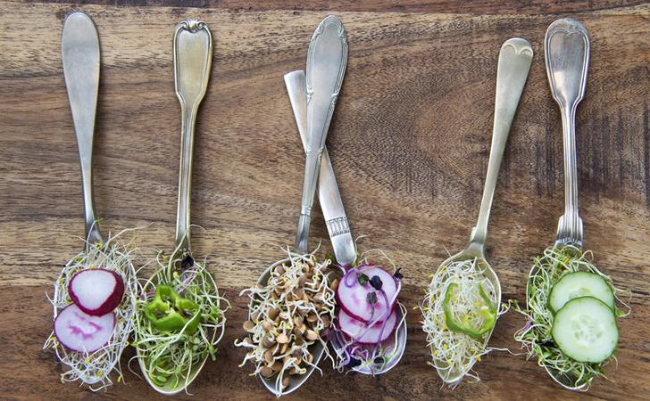 Фото №1 - 14 вещей, которые надо знать, прежде чем стать вегетарианцем