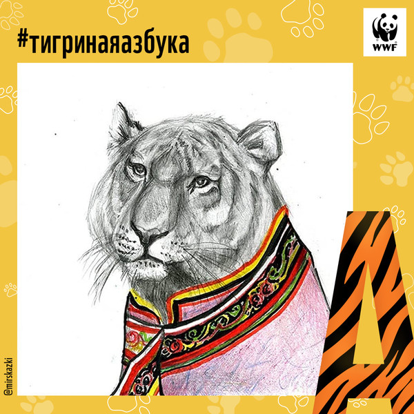 Фото №1 - Тигриная азбука: спасем амурского тигра вместе!