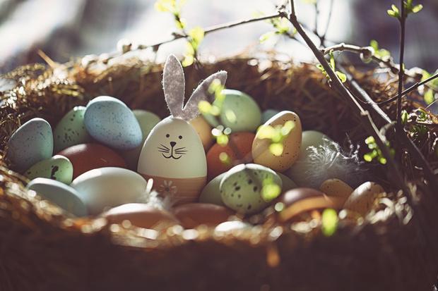 Фото №3 - Красим яйца на Пасху: 10 простых и эффектных способов