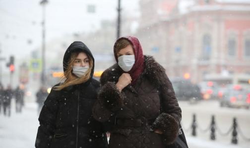 Фото №1 - Производитель противовирусных средств назвал доход от эпидемии гриппа в России