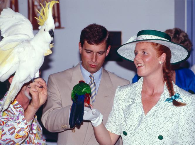Фото №10 - Декрет по-королевски: сколько отдыхают мамы из семьи Виндзор?