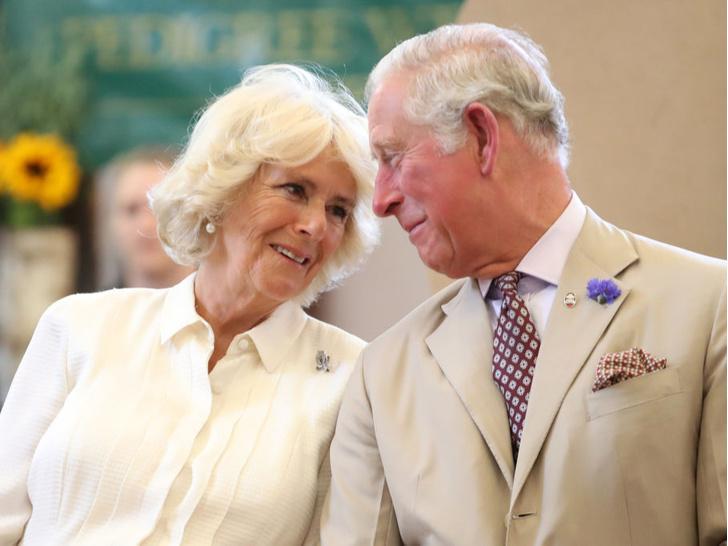 Фото №4 - Гнев будущего короля: что больше всего не нравится Чарльзу в королевской жизни