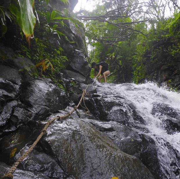 Фото №27 - Звездный Instagram: Сказки леса