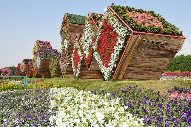 Фото №1 - Место дня. Дубай (ОАЭ). Сад чудес