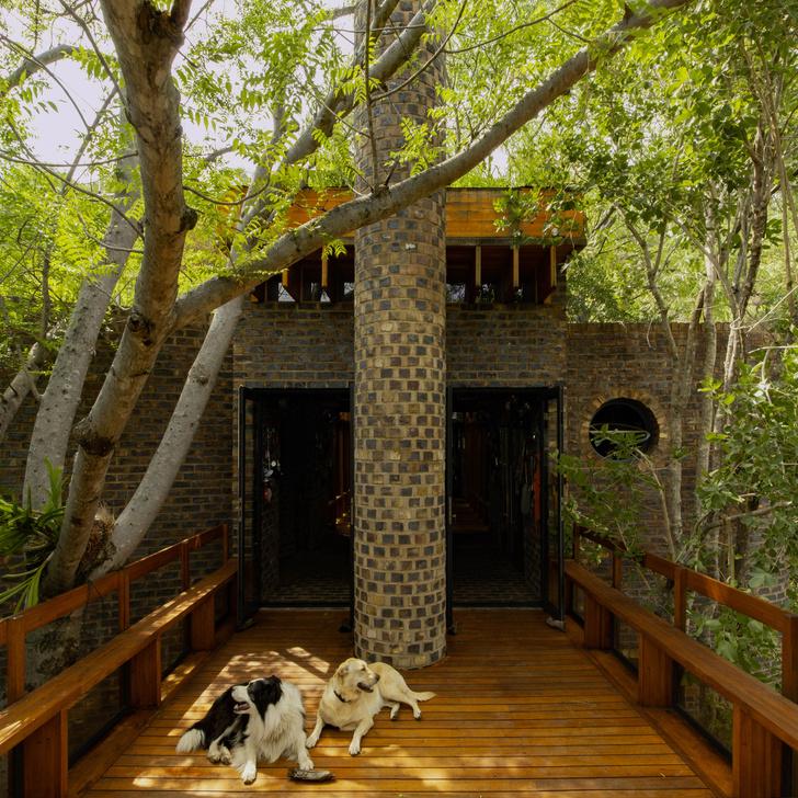 Фото №5 - Узкий дом в Южной Африке