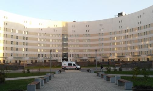 Фото №1 - У 26 работников «Ниссана» и «Тойоты» выявлен гепатит А, у одного — клещевой энцефалит