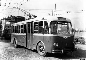 Фото №7 - 8 неожиданных фактов о самом рогатом виде транспорта