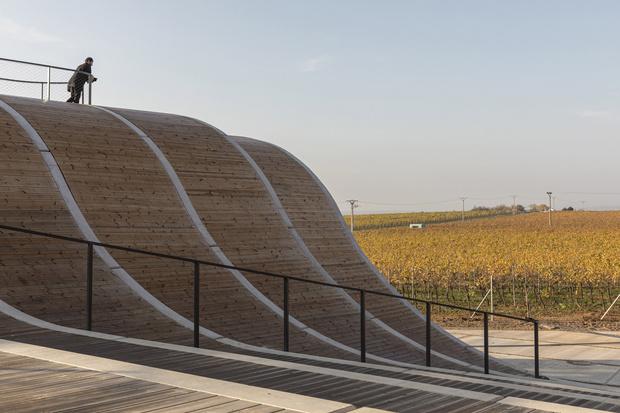 Фото №6 - Винодельня со смотровой площадкой на крыше в Чехии