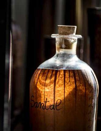 Фото №7 - Mon Guerlain: секретные ингредиенты нового аромата
