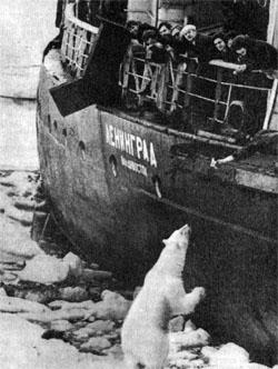 Фото №2 - Белое поле «Ленинграда»