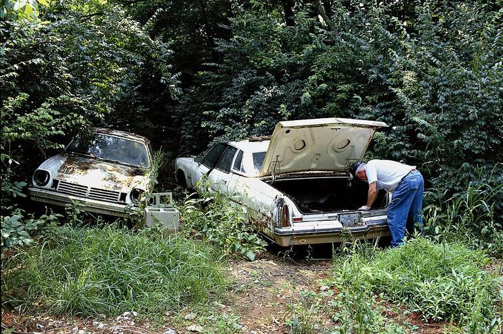 Фото №1 - «Ферма трупов»: место, где изучают воздействие окружающей среды на мертвые тела