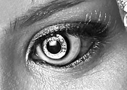 Фото №7 - Очки-прилипалы