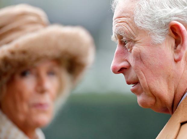 Фото №7 - Герцогиня Камилла: как она становится новой королевой сердец