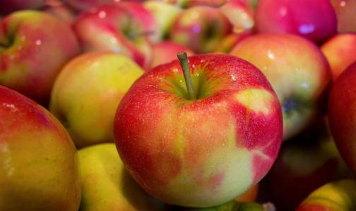 Фото №1 - В Роспотребнадзоре объяснили, почему нельзя есть много яблок