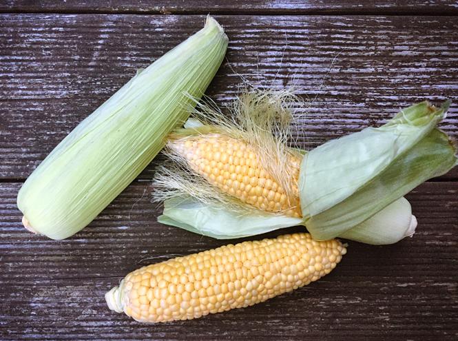 Фото №3 - «Царица полей»: все, что вы не знали (или забыли) о кукурузе