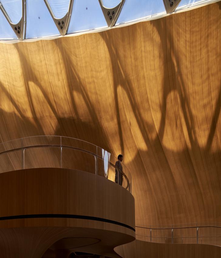 Фото №5 - Футуристический конгресс-центр в Китае по проекту MAD
