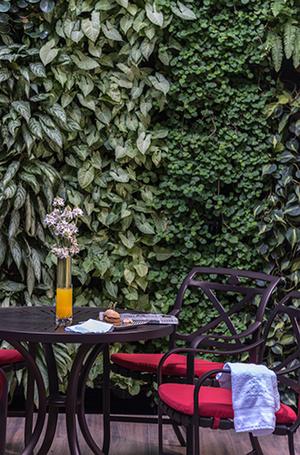 Фото №10 - Чико Латино или Путешествие в самые опасные города мира