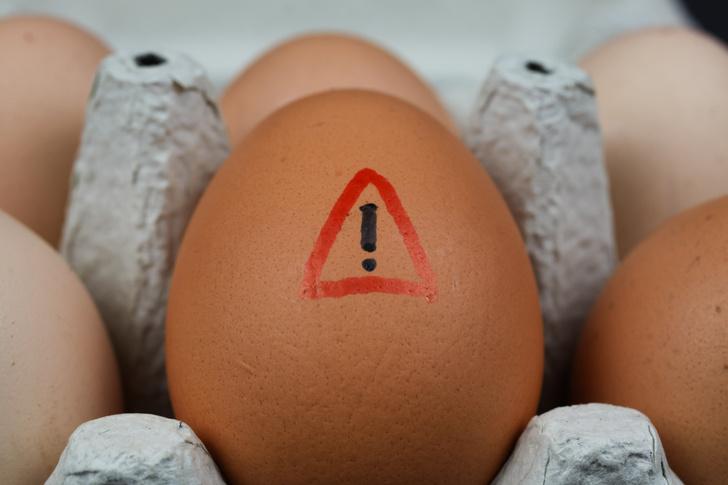 Фото №1 - Аллергия на яйца: причины и профилактика