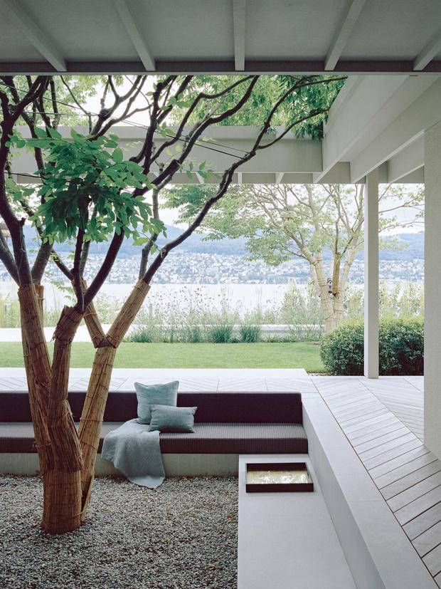 Фото №2 - Дом у виноградника в Цюрихе