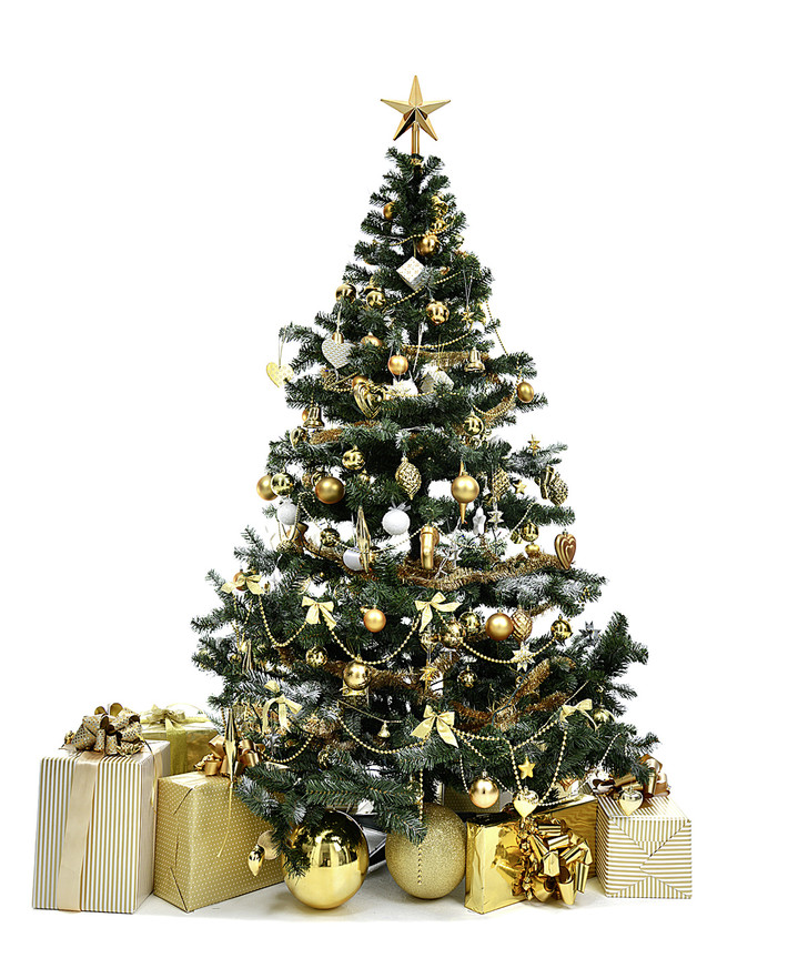 Фото №5 - Фактология: придуманное Рождество