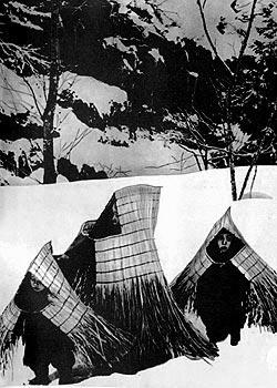 Фото №1 - Солома под снегом