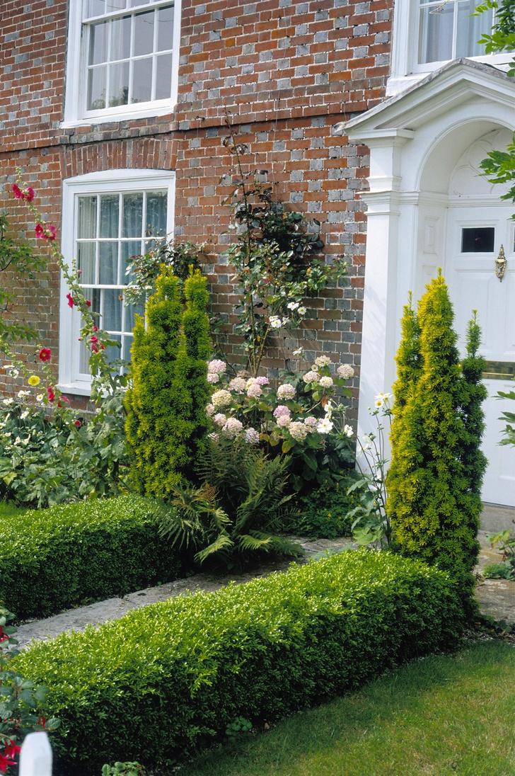 Фото №2 - Сад в миниатюре: советы начинающим садоводам