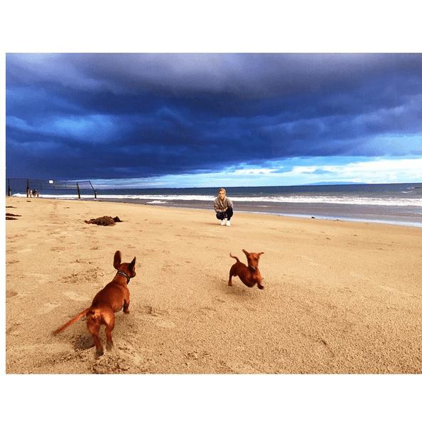 Фото №19 - Звездный Instagram: Знаменитости на море