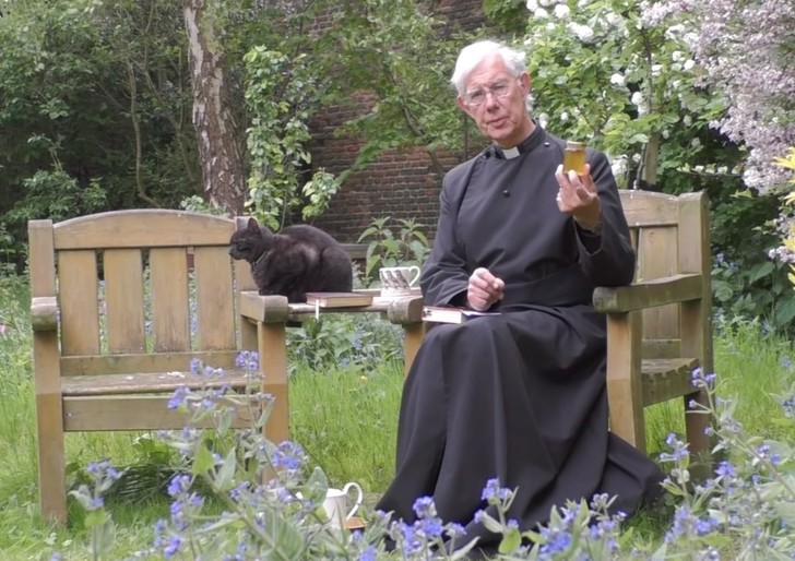 Фото №1 - Кот, исчезающий в рясе священника, стал звездой Интернета (видео)