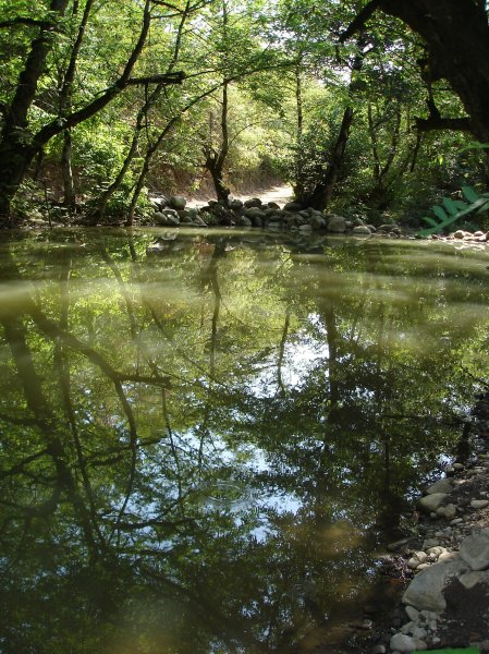 Фото №8 - К югу от лагеря шемаханской царицы