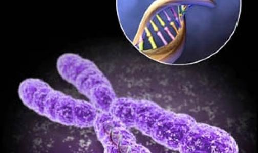 Фото №1 - Какими редкими генетическими заболеваниями страдают петербуржцы