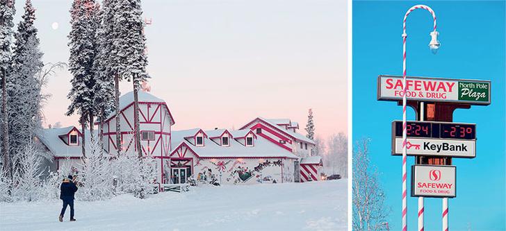 Фото №3 - Хозяин Аляски