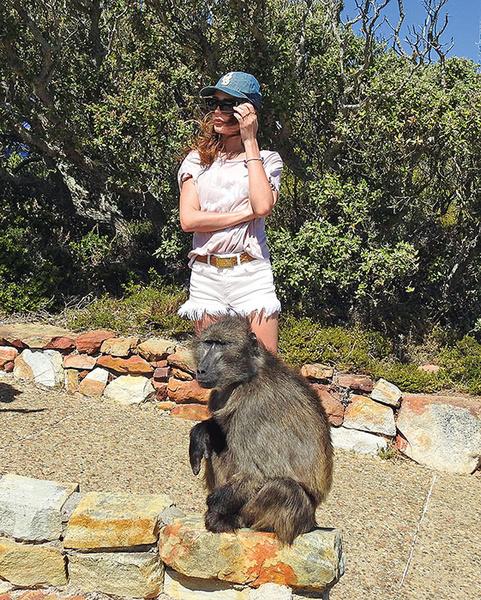 Фото №3 - Ведущая «Доброго утра» устроила свидание с гепардом