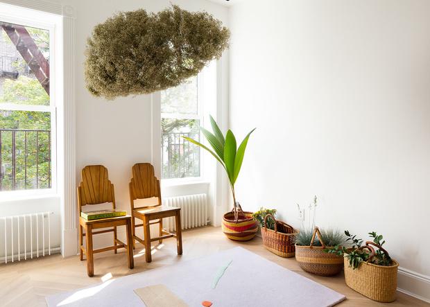 Фото №4 - Растения в интерьере: 6 идей для создания мини-сада