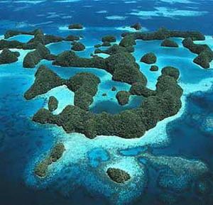 Фото №1 - В Тихом океане жили карлики