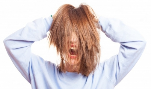 Фото №1 - В этом году петербуржцев стали реже одолевать вши