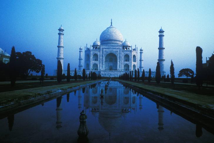 Фото №1 - Индийские полицейские начали защищать туристов от макак