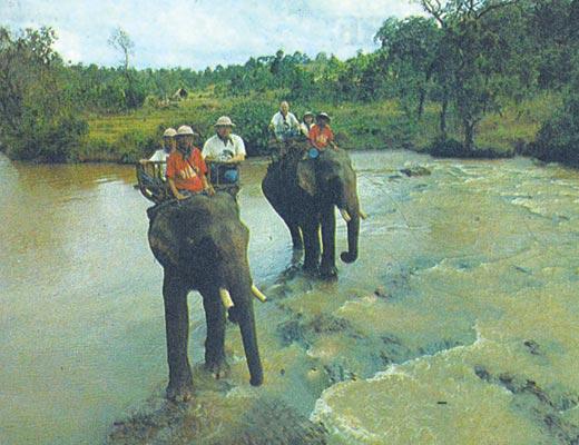 Фото №1 - На слонах в каменный век