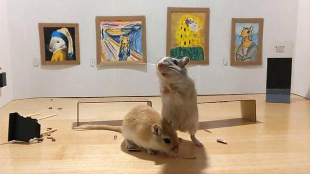 Фото №1 - Муж и жена на самоизоляции построили маленькую картинную галерею для своих мышей